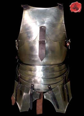 Milanese Breastplate and Backplate